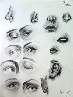 drawing art sketchs mouth nose