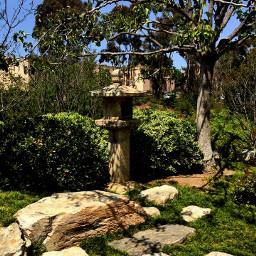 landscape garden pathways texture