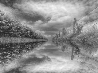 mirrored photography blackandwhite nature