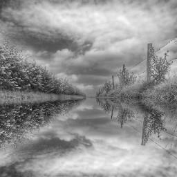 mirrored photography blackandwhite nature