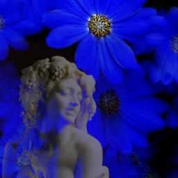 blureffet utlisation marguerite fleurs statue