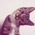 @queenie-cat